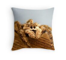 Portrait of a Spider Throw Pillow