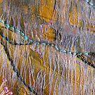 Eucalypt I by Christine Jones