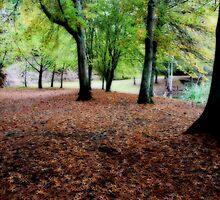 Tread Softly by Varinia   - Globalphotos