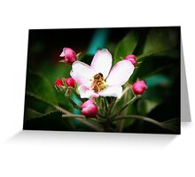 Blossoming Bee Greeting Card