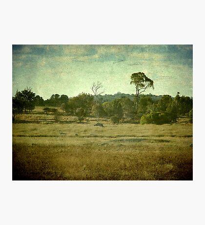 Racecourse Lagoon, Uralla, New South Wales Photographic Print