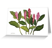 Red Ginger Botanical Greeting Card