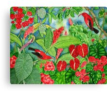 Red Iiwi Garden Canvas Print