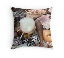 Sea shells,  I see sea shells.  Throw Pillow