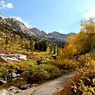 Canyon Pathway by JVBurnett