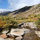 Creek by JVBurnett