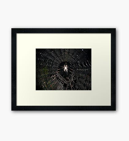 Web Maker Framed Print