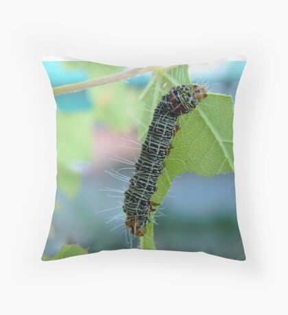 The very hungry caterpillar Throw Pillow