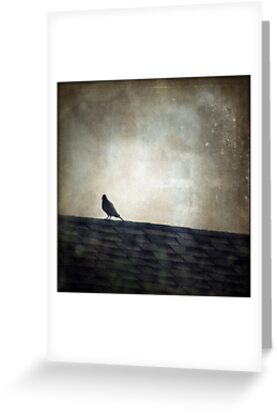 Lonesome Dove by Trish Mistric