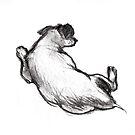 Spot ; charcoal sketch by Roz McQuillan