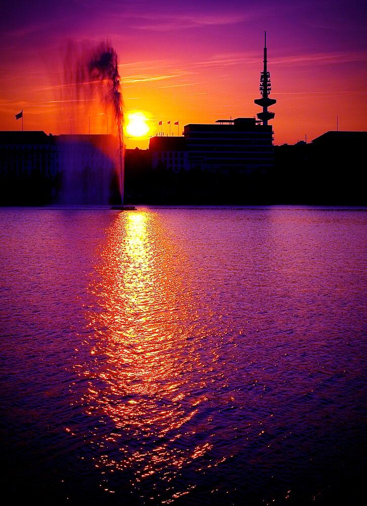 Summer Sunset by Alexandru C.