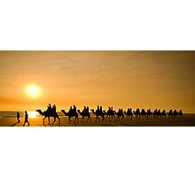 Camels on Broome Beach  Photographic Print