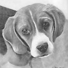 Beagle (updated) by Karen Townsend