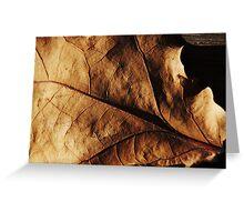 Leaf on Wood Greeting Card