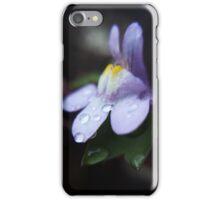 Freezing Winter Morning Dew iPhone Case/Skin
