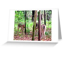 """The """"Tail""""  of Three Deer Greeting Card"""