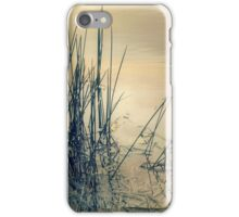 Winter Mood iPhone Case/Skin