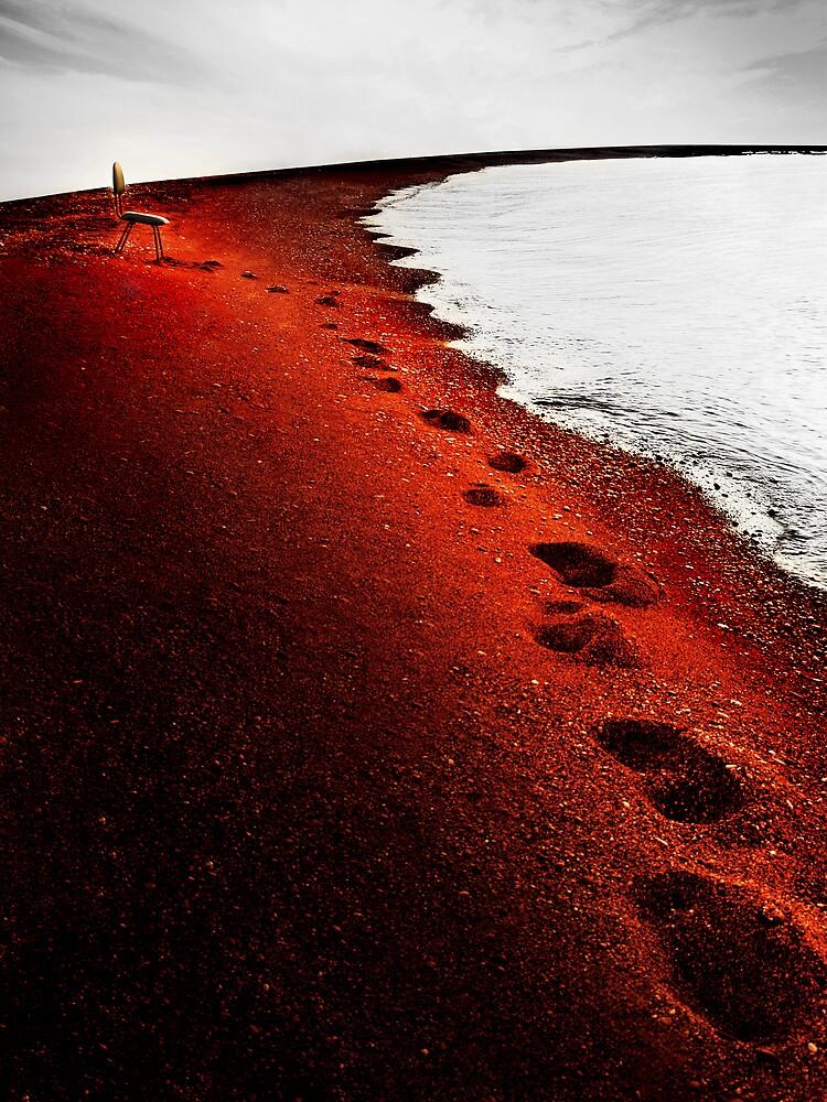 13 Steps to Nowhere by Alexandru C.