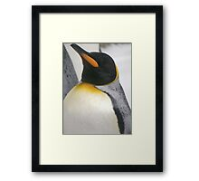 proud penguin Framed Print