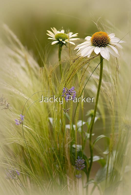 Summer softness by Jacky Parker