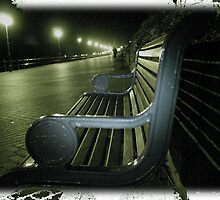 """ Sleeper and The Bench"" by Merice  Ewart-Marshall - LFA"