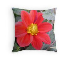Passionate Red Petals Throw Pillow