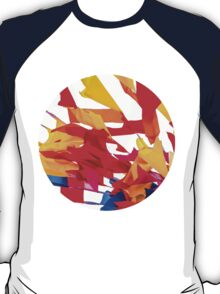 Colorful flags T-Shirt