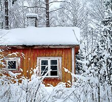 4.2.2015: Small and Abandoned Sauna I by Petri Volanen