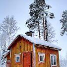 4.2.2015: Small and Abandoned Sauna II by Petri Volanen