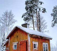 4.2.2015: Small and Abandoned Sauna II by Petri Volanen