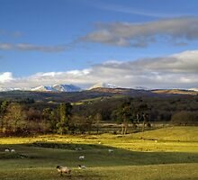 Rusland Valley and Coniston Fells by Jamie  Green
