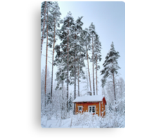 4.2.2015: Small and Abandoned Sauna III Canvas Print