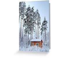 4.2.2015: Small and Abandoned Sauna III Greeting Card