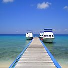 Dive Boats in the Caribbean by Honor Kyne