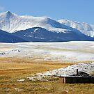 Serene Isolation in Colorado by Patricia Montgomery