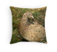 Hen Pheasant Throw Pillow
