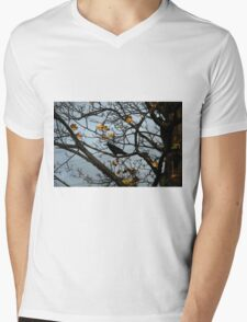 Autumn Mens V-Neck T-Shirt
