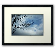 Look Framed Print