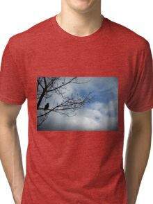 Look Tri-blend T-Shirt