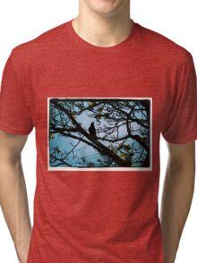 Pose Tri-blend T-Shirt