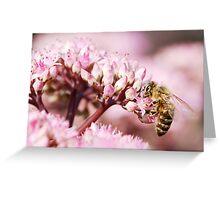 bee at work Greeting Card