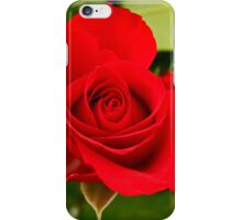 Red Rose for Love iPhone Case/Skin
