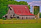 The Old Barn by Charles Dobbs Photography