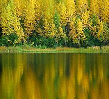 Cheney Lake by jsjones