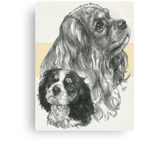 Cavalier King Charles Spaniel, Father & Son  Canvas Print