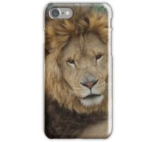 Shabee iPhone Case/Skin