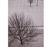 Separation Photographic Print