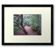The Haunted Wood Framed Print