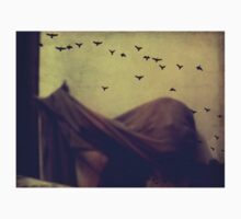 Last night I was flying on the wall and lost direction. by Jessica  Lia