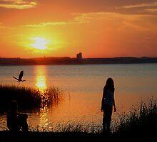 Traverse City Sunrise by Peggy  Zinn